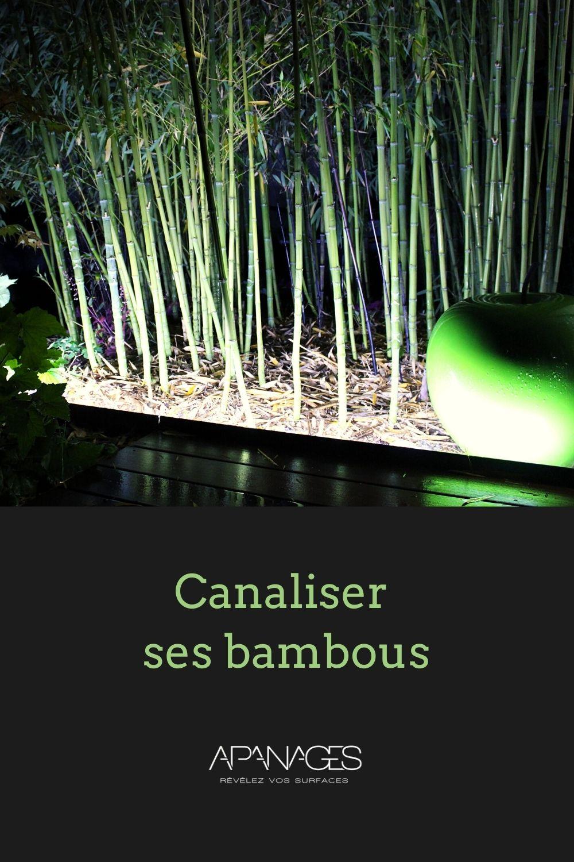 Comment canaliser ses bambous