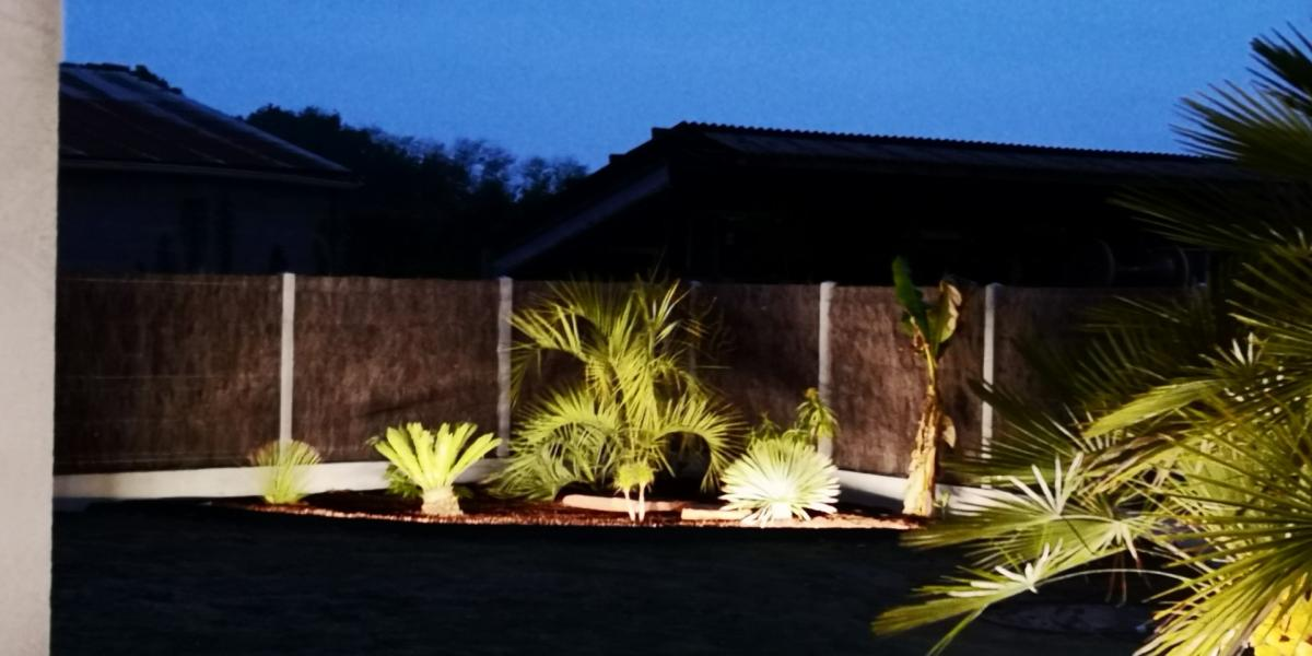 luminaire jardin éclairage extérieur massif plante arbre