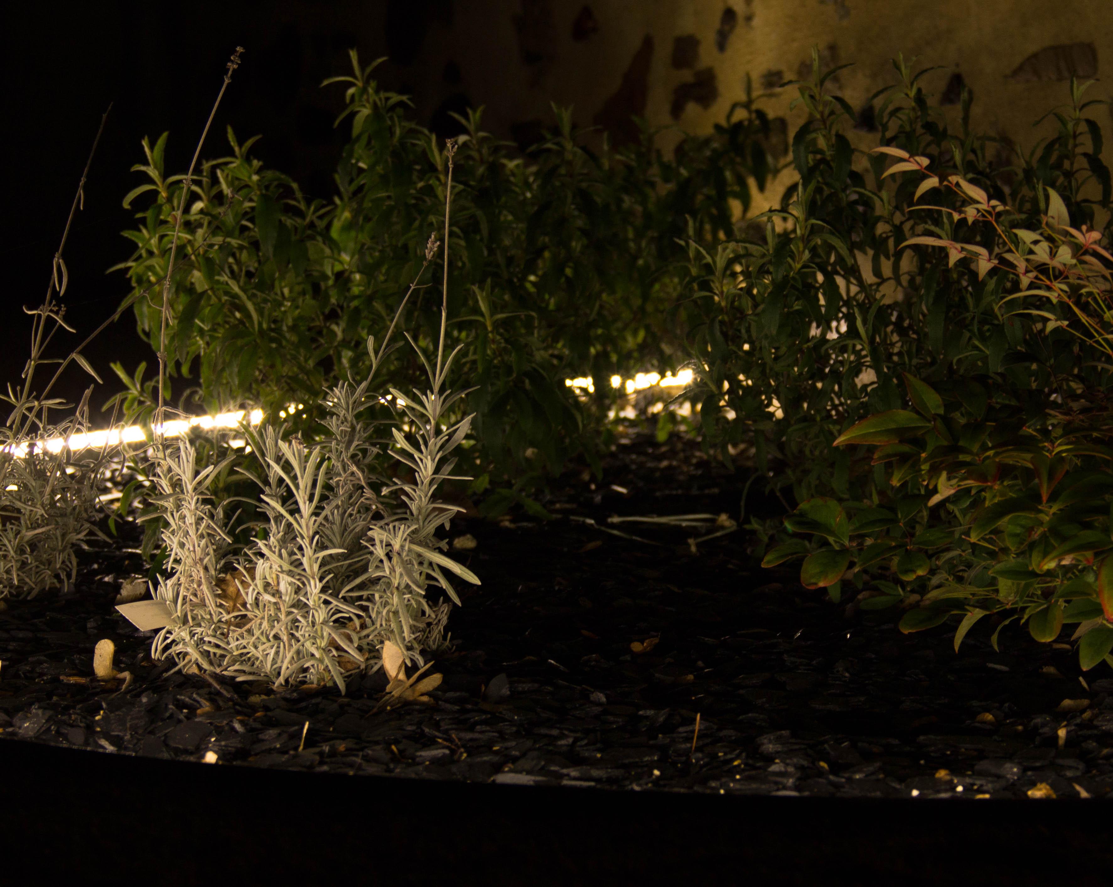 Bordure jardin souple aluminium PVC plastique délimitation parterre plate-bande