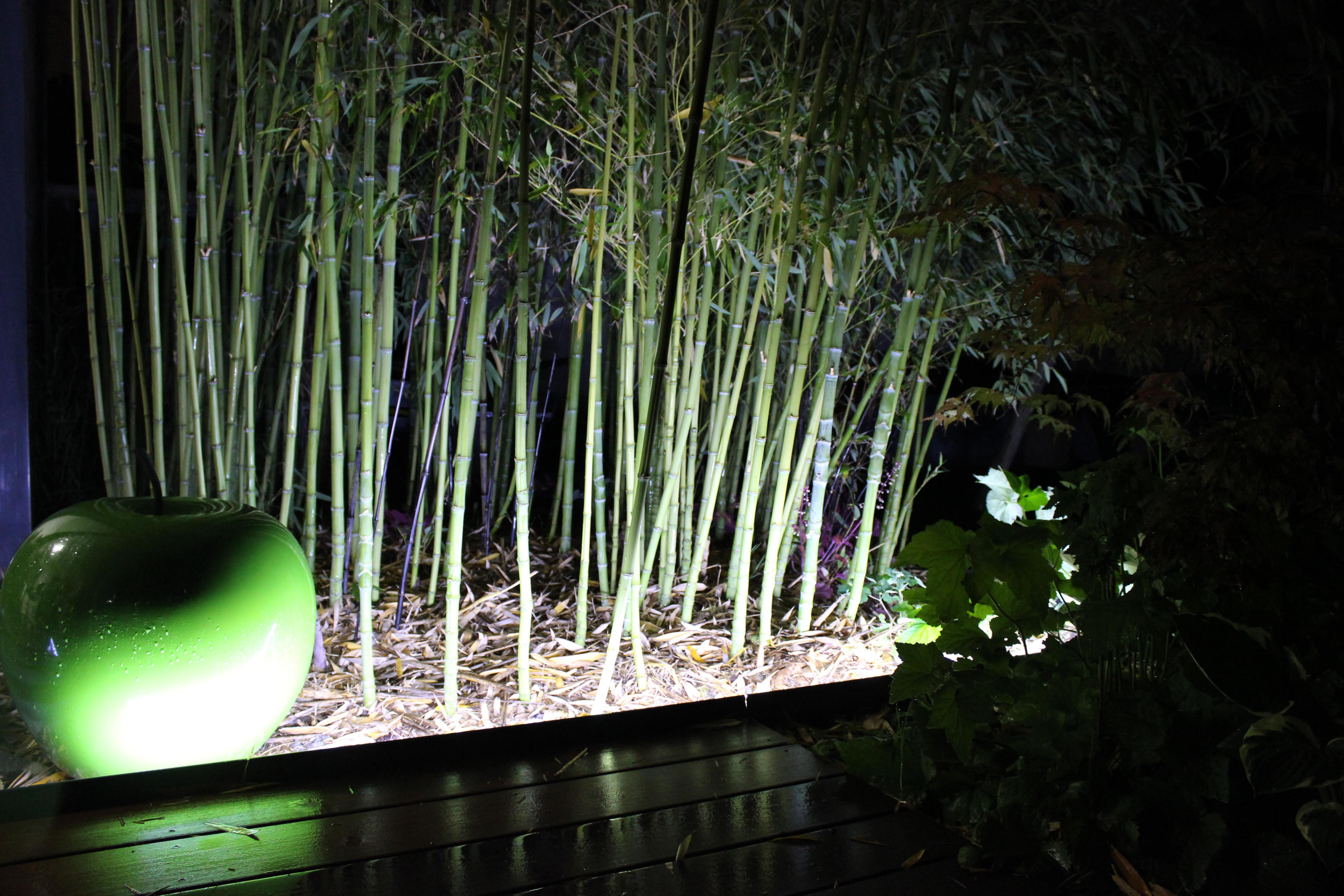 Bordure Jardin Led Id Es Sur Les Parcs Et Leur Quipement De  # Bordure De Jardin Discrete