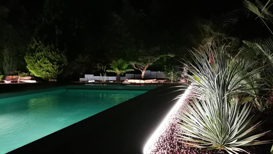 bordure volige métal alu jardin massif parterre olivier palmier prêles érable du Japon