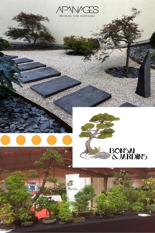 réalisation bonsai et jardins avec bordures apanages