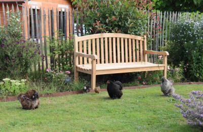 jardin poules banc bordure acier corten